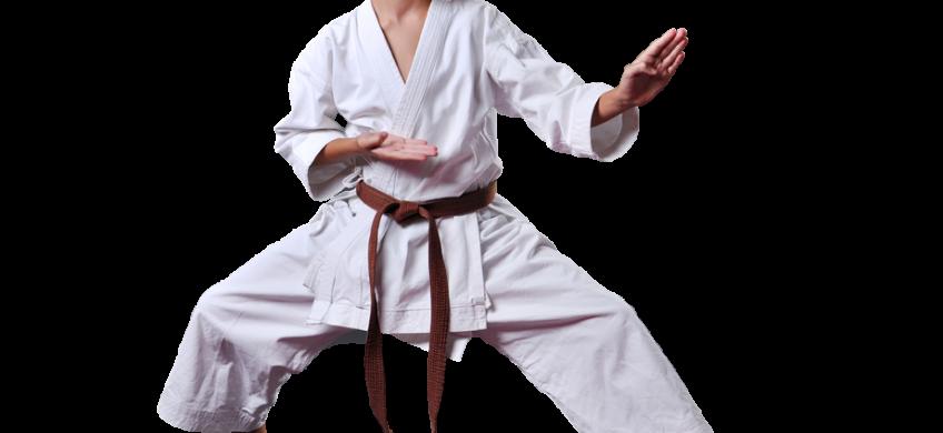 teen boy in karate stance